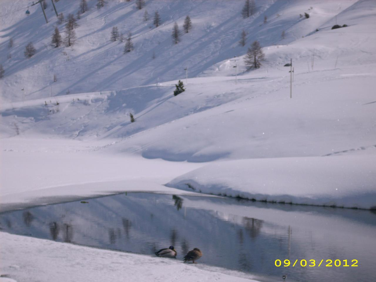 Hiver for Piscine du lac tours